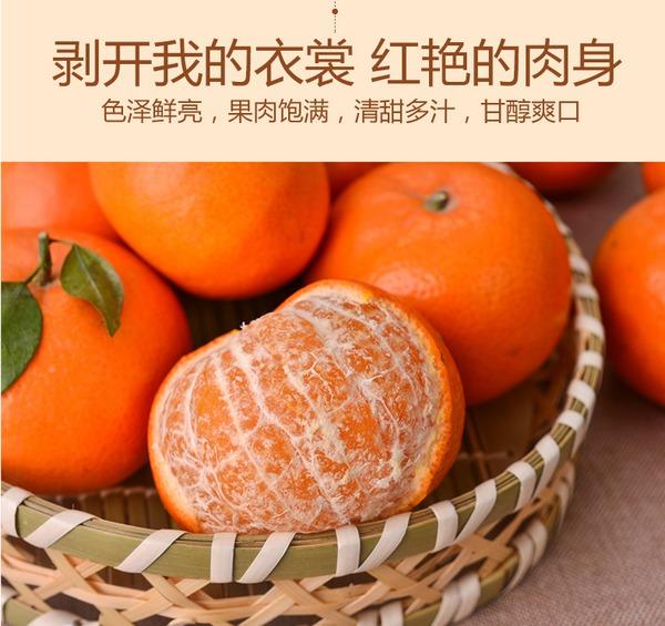 清甜多汁,广西沃柑10斤新鲜水果